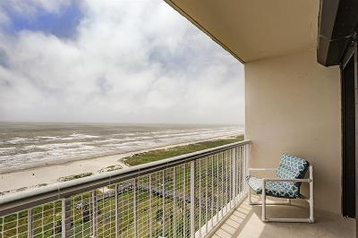 Mid/High-Rise For Sale: 1401 E Beach Drive #1101