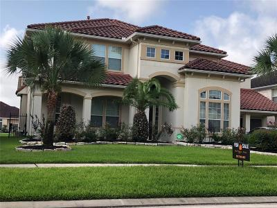 Houston Single Family Home For Sale: 11903 Palmetto Shores Drive