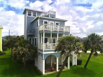 Galveston County Single Family Home For Sale: 25334 Intrepid Lane