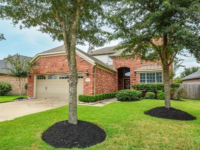 Katy Single Family Home For Sale: 25311 Mallard Bay Lane