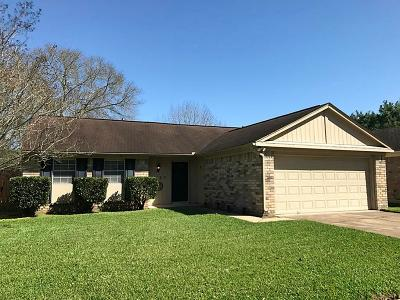 Sugar Land Single Family Home For Sale: 3927 Windmill Street