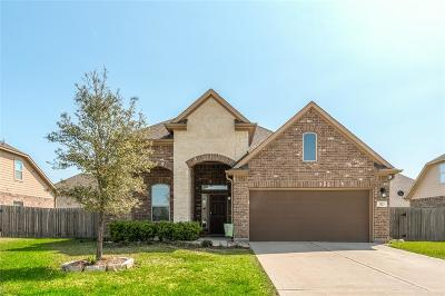 Pearland Single Family Home For Sale: 1523 Pastureview Drive