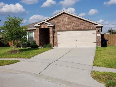 Rosenberg Single Family Home For Sale: 5107 Windy Parke Lane