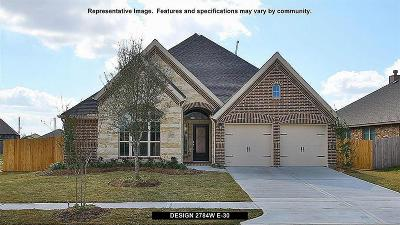 Conroe Single Family Home For Sale: 217 Red Petal Way