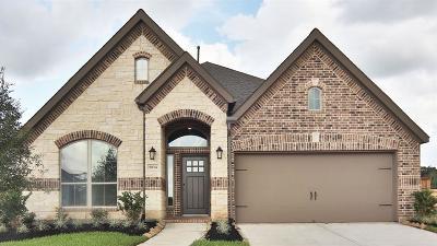 Missouri City Single Family Home For Sale: 9014 Golden Mist Drive