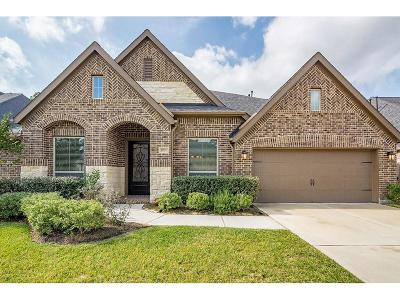 Spring Single Family Home For Sale: 17727 Cypress Berry Drive