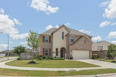 Katy Single Family Home For Sale: 4811 Oak Rambling Drive