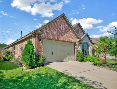 Houston Single Family Home For Sale: 17210 Pine Hollow Landing Court