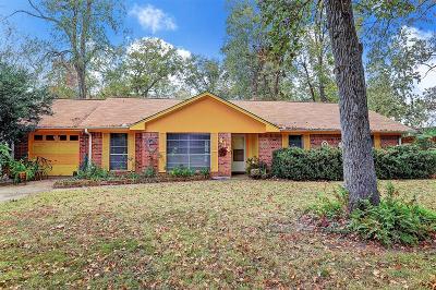 Houston Single Family Home For Sale: 414 Martin Street