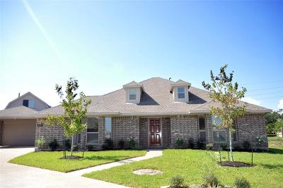 Manvel Single Family Home For Sale: 6742 Grapevine Bend