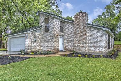 Pearland Single Family Home For Sale: 2203 Sleepy Hollow Drive