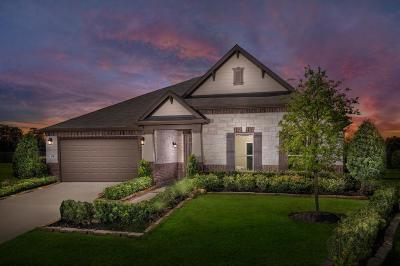 Porter Single Family Home For Sale: 20707 Littlewick Drive
