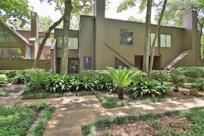 Houston Condo/Townhouse For Sale: 235 Litchfield Lane