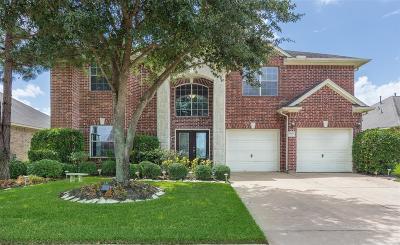 Houston Single Family Home For Sale: 17003 Locust Springs Drive