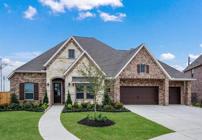 Cinco Ranch Single Family Home For Sale: 2703 Winthrop Meadow Way