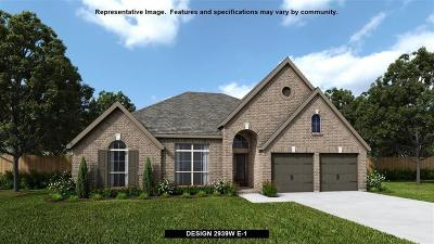 Pearland Single Family Home For Sale: 13615 Imperial Island Lane