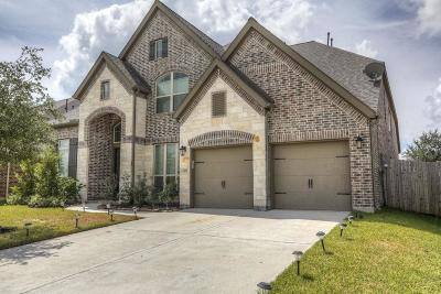 Pearland Single Family Home For Sale: 13420 Swift Creek Drive
