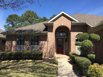Pearland Single Family Home For Sale: 3431 S Peach Hollow Circle