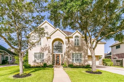 Sugar Land Single Family Home For Sale: 1407 Cross Valley Drive