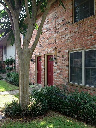 Houston Condo/Townhouse For Sale: 515 Tallowood Road #56