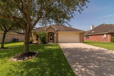 League City Single Family Home For Sale: 3239 Meadow Bay Drive