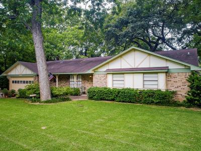Lake Jackson Single Family Home For Sale: 202 Sleepy Hollow Drive