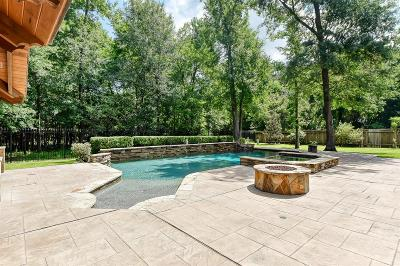 The Woodlands Single Family Home For Sale: 51 Nocturne Woods Place