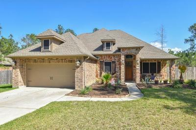 Magnolia Single Family Home For Sale: 30 Brookefield Circle