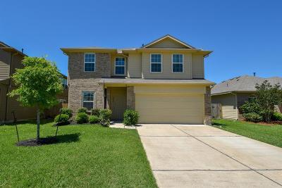 Rosenberg Single Family Home For Sale: 2202 Hackberry Bank Lane