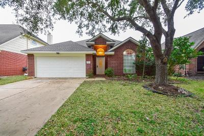 New Territory Single Family Home For Sale: 114 Lissa Lane
