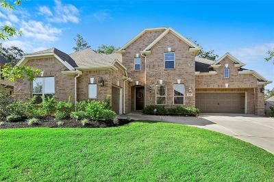 Single Family Home For Sale: 2187 Graystone Hills Drive