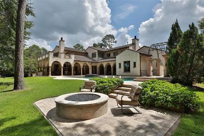 Spring Single Family Home For Sale: 7 Thornblade Cir