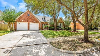Sugar Land Single Family Home For Sale: 6010 Hansford Lane