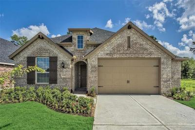 Conroe Single Family Home For Sale: 10143 Coopers Hawk Way