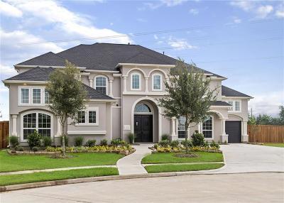 Katy Single Family Home For Sale: 26410 Crimson Bluff Lane