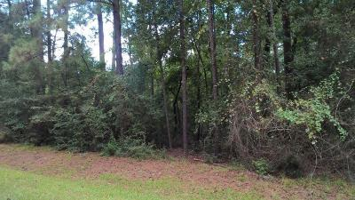 Conroe Residential Lots & Land For Sale: 2407 Chantilly Lane