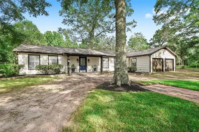Magnolia Single Family Home For Sale: 19546 E Lake Drive