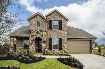 Single Family Home For Sale: 21010 Coastal Springs Drive