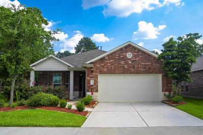 Tomball Single Family Home For Sale: 11903 Ribbon Falls Drive