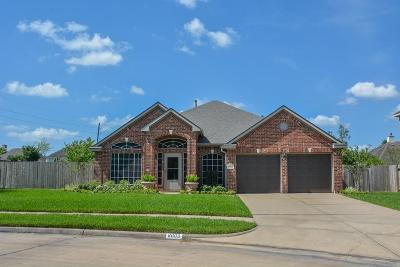 Sugar Land Single Family Home For Sale: 8003 Hidden Terrace Drive