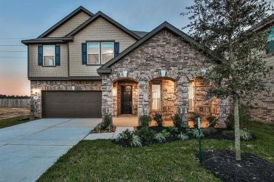 Richmond TX Single Family Home For Sale: $259,995