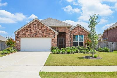 Katy Single Family Home For Sale: 4815 Kendra Forest Trail