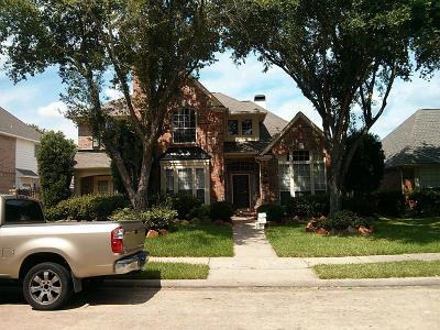 Houston Single Family Home For Sale: 13623 Shadow Falls Court