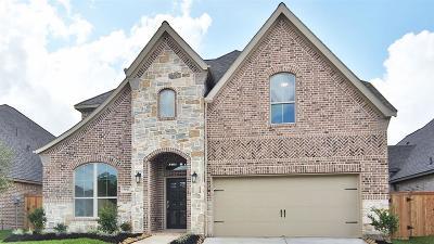 Missouri City Single Family Home For Sale: 9011 Emerald Cane Drive