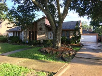 Katy Single Family Home For Sale: 21311 Park Willow Drive