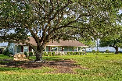 Austin County Country Home/Acreage For Sale: 11668 New Wehdem Road