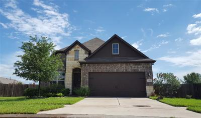 Katy Single Family Home For Sale: 2542 Grey Reef Drive