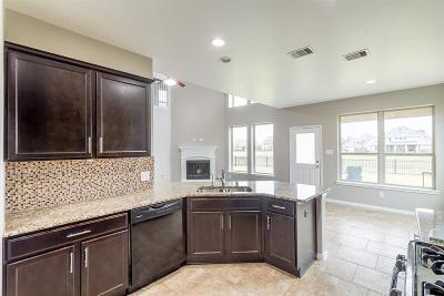 Rosenberg Single Family Home For Sale: 9714 Dry Creek Court
