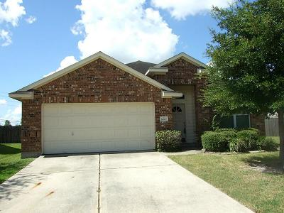 Tomball Single Family Home For Sale: 20007 Mammoth Falls Drive