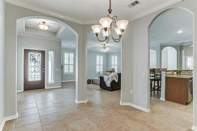 Pearland Single Family Home For Sale: 2405 Modena Court